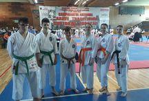 karate risei competiții