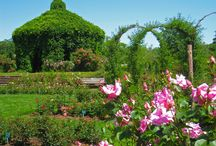 Gardens to visit in Connecticut