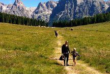 Le Dolomiti..... Sembra una cartolina #lagocalaita #trentino #travelblogger #trekking