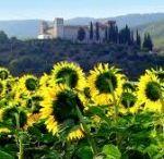 Agriturismo Umbria / Selezione dei migliori agriturismi presenti in Umbria con tante idee per le vacanze.