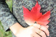 Autumn Svirig