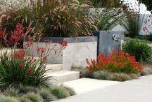 Simons garden