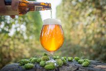 Calling All Hopheads / Love hops? Do you wonder why anyone would drink anything other than an IPA? This board is for you.
