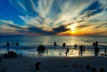 The Cape's Landscape / Snap Shots of Cape San Blas