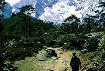 Manali View