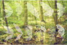 Fairy Photoshoot / Fairy Photoshoot