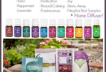 Young Living Premium Starter Kit / All about the kit! / by Gayle Oakman