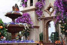 We Love ❤️ San Miguel de Allende