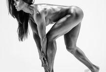 bodies of work/bodybuilding