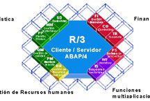 Información de SAP