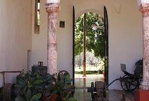 My Yucatan Culture / by Jenny Caamal