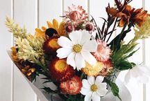 Les fleurs, l'art plastique et chiens