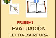 evaluación escritor