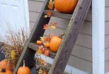 Autumnal Displays