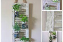Herb garden assignment