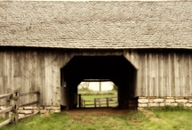 old barns / by Tammy Land
