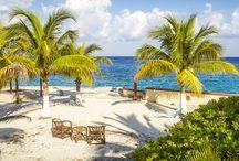 El Cid Vacations Club November Recommendations