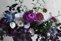 SF Sophisticated Purple Wedding