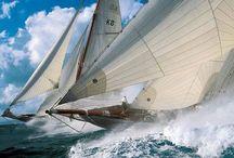 Regatas / Regatas de embarcaciones a vela, barcos espectaculares, regatas offshore & inshore, barcos clasicos ...