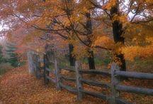 West Virginia (USA)