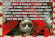 Grumpy Cat / by Kasey Peters