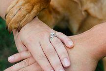 pies & ślub