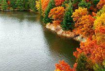My beautiful Autumn