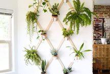 inred med växter