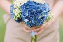 Flowers / by Helen Zumwalt