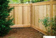 Curb Appeal / Lawn and Landscaping / by Ron Rohr