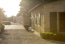 Philosophy / Bedrock. Château Palmer's wines are a red thread reaching into history. But deeper still, at the estate's foundation, are values, commitments and community. A world unto itself, curious, sensitive, attentive… encompassing more than just wine.