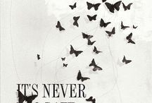 Never Too Late / by Karen Petersen Lancaster