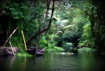 Hills & Backwaters, Kerala