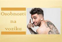 www.vozickar.sk