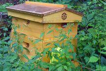 Beekeeping / Beekeeping / by Kim Rivera