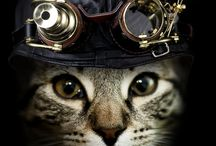 Steampunk Funk / by Joseph Andrew