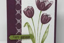 Tranquil tulip