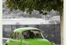 Cars - VW Beetle