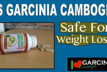 Garcinia Cambogia On YouTube / Here We Will Create Informative Videos To Answer All Your Garcinia Cambogia Extract Supplements Related Questions.