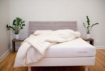 TheCleanBedroom - Organic Mattresses
