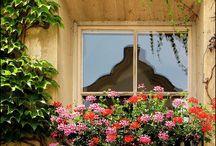 Fenster, Türen und Balkons gestalten