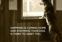 Dog Quotes **