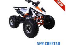 MotoMaxUs.com 125cc ATVs for Sale