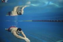 Swimming | Zwemmen