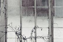 outdoor / by Laura Gelis