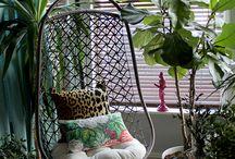 plantes intérieur