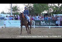Videos de Doma Vaquera