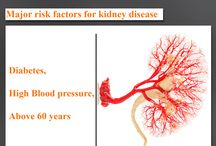 world Kidney Day / 10th March is celebrated as World Kidney Day, to create and spread awareness on kidney disease.