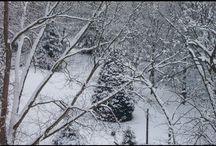 "Sleigh Ride Anyone?  :) / New twist on the classic ""Jingle Bells""."