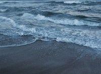 sea what I see